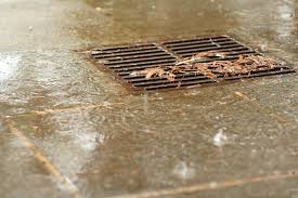shorncliffe-qld-blocked-drains-plumbers-cheap-affordable